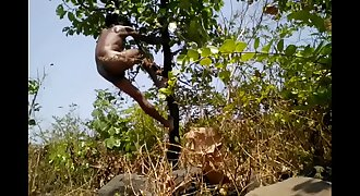 Village Boy Nude Safar In Forest Play With Tree'_s